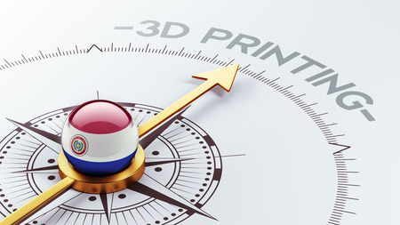 Paraguay High Resolution 3d Printing Concept photo