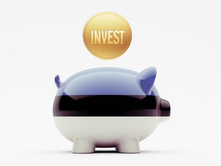 strategist: Estonia High Resolution Invest Concept Stock Photo