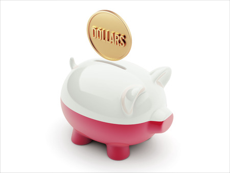 Poland High Resolution Dollars Concept High Resolution Piggy Concept photo