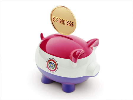 Paraguay High Resolution E-Business Concept High Resolution Piggy Concept photo