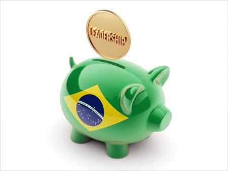 Brazil High Resolution Leadership Concept High Resolution Piggy Concept Imagens