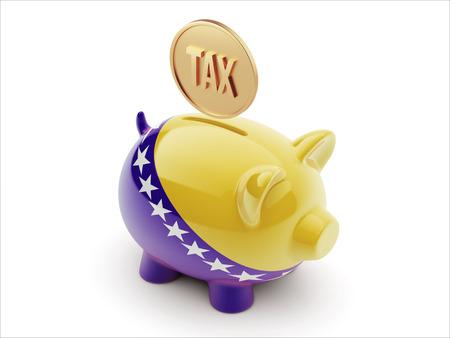 herzegovina: Bosnia and Herzegovina  High Resolution Tax Concept High Resolution Piggy Concept Stock Photo