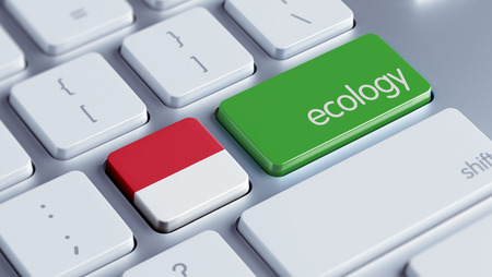 Indonesia High Resolution Ecology Concept Stock Photo