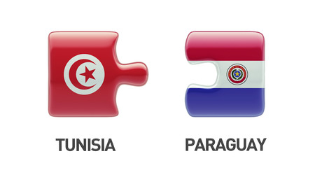 tunisie: Tunisia Paraguay High Resolution Puzzle Concept Stock Photo