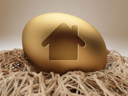 High Resolution Egg Icon Huis Stockfoto - 52889027