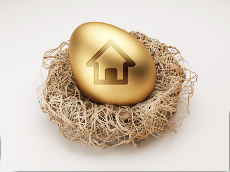 High Resolution Egg Icon Huis Stockfoto