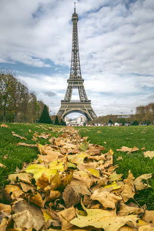 tower: Eiffel Tower captured in autumn with a lot of yellow leaves on the grass. Stock Photo