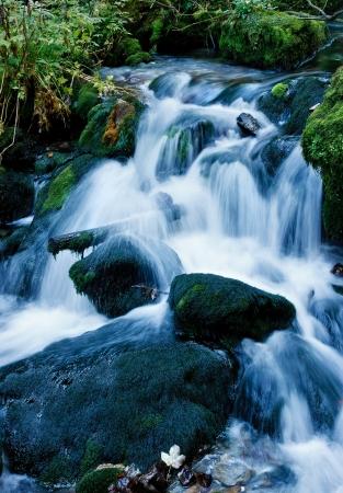 cascades: River Mountain Archivio Fotografico