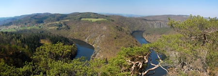 pinetree: Spring panorama with river and pine-tree, Czech Republic Stock Photo