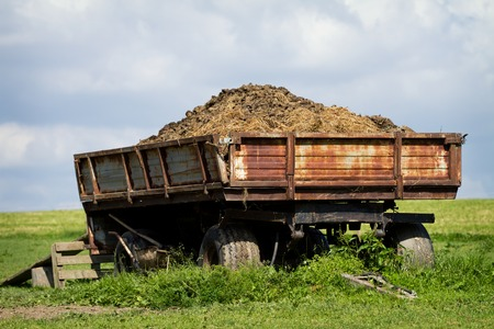 tow tractor: Tow tractor with horse manure standing on pasture Stock Photo