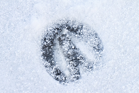 Footprint of a Horse in Snow photo