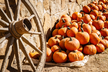 spoked: Pumpkins piled against a rustic stone wall
