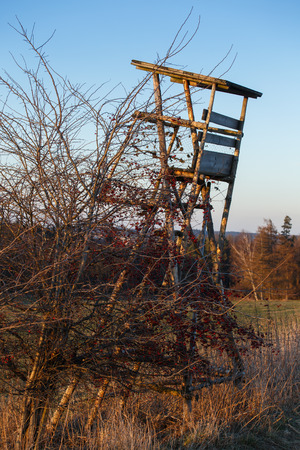 hunters tower: Wooden Hunters High Seat hunting tower