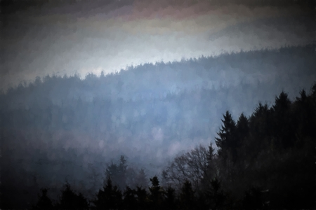 fog forest: Painting dark forest in morning fog.