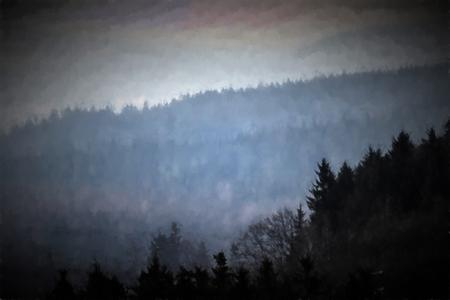 dark forest: Painting dark forest in morning fog.