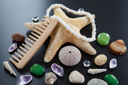 estrellas cinco puntas: Background with different shells and sea five-pointed stars