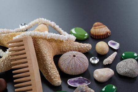 estrellas cinco puntas: Fondo con diferentes conchas y estrellas de mar de cinco puntas
