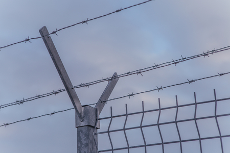 wire fence: Steel fence with barbed wire