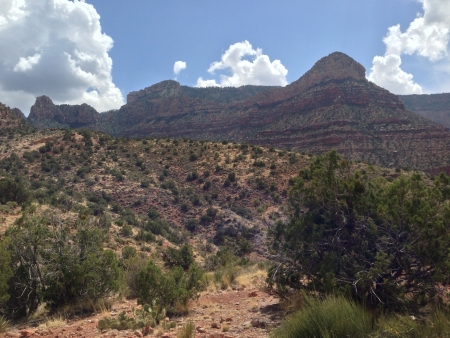 From the bottom of the grand canyon