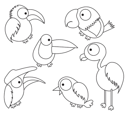 woodpecker: Bird drawing for kid