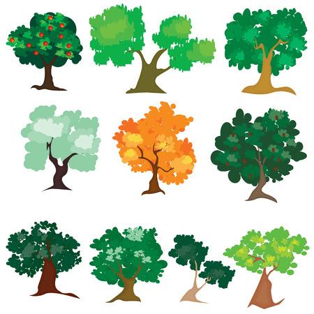 Illustration de différent type d'arbre Banque d'images - 54968500