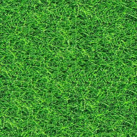 Grass seamless pattern. Stock Photo