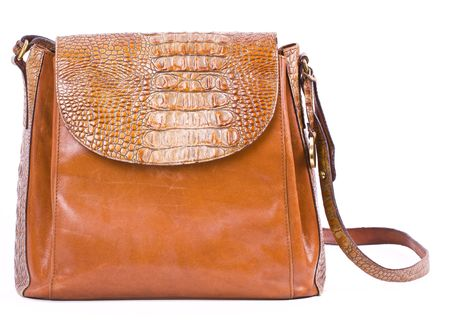 Alligator purse isolated on white.