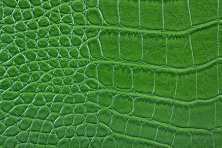 Green snake leather. photo