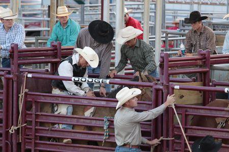 DENTON, TX, USA-22/8/2009 prepararsi per il rodeo alla North Texas State Fair. Editoriali