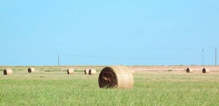 Hay stack detail. Stock Photo - 7638820