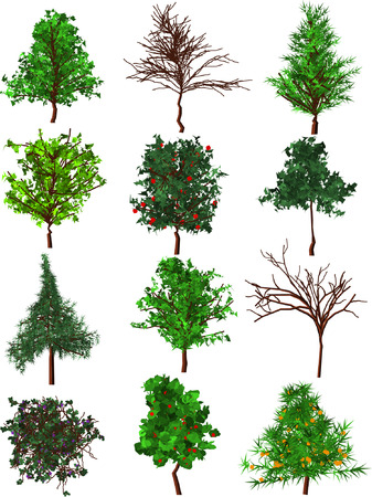Set of 12 silhouette trees. Vector