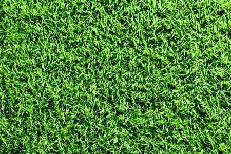 Groen naadloze vers gras. Stockfoto