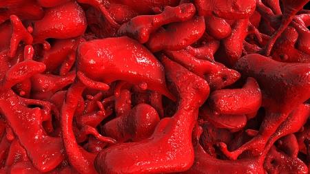 vaisseaux sanguins: Vaisseaux sanguins rouges