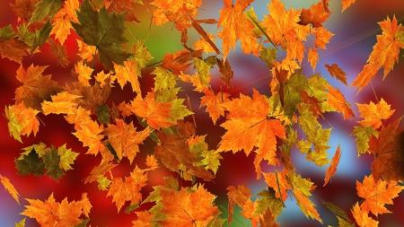 Autumn falling leaves Фото со стока