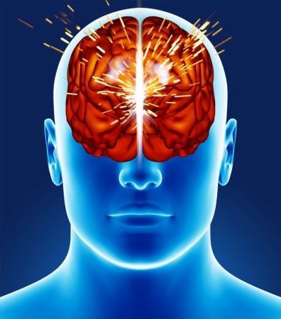 Brain detail photo