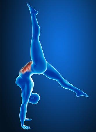 Woman workout photo