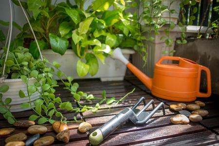 small garden: Small garden in a limited space Stock Photo