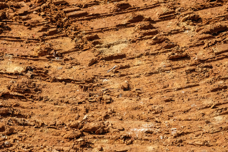 red soil: The texture of the red soil