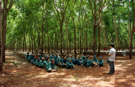 After working day, Dong Phu plantation