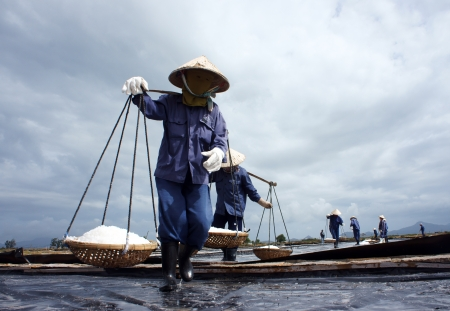 Group of saltworker reap salt, they wear conical straw hat, carry salt with shoulder pole or gather salt in pile, reflect their sihouetted on surface salina  February 4, 2013 Stock Photo