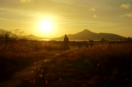 Silhouette s man walking on meadow at sunrise Imagens