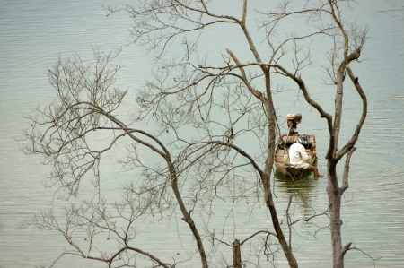 The lake with dry tree, fisherman net fish on lake in Dak Lak, Viet Nam Stock Photo - 23484750