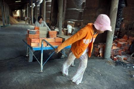 workwoman:  VINH LONG, VIET NAM- JULY 1: Worker  working at brick factory, workwoman in hard work, pulling up the rickshaw with full of brick in Vinh Long, Viet Nam on July 1, 2013