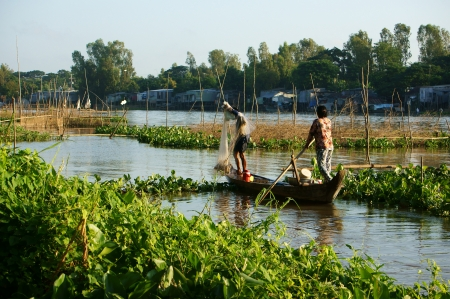 Couple of fisherman catch fish on river in flood season, the woman rowing the row boat, the man do fishing, river cover by water hyacinth in Viet Nam on Nov 12, 2013