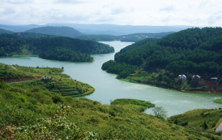 enclose: Amazing landscape of Tuyen Lam lake from mountain, the lake enclose by pine tree forest,  villa among green, fresh jungle make impression view