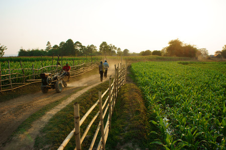 coming home: DAKLAT- VIETNAM- FEB 7: Peaceful, beautiful scene of countryside with dusty path, wooden fence, green vegetable field, farmer walking on way and ride farm vehicle to coming home, Viet Nam, Feb 7, 2014 Editorial