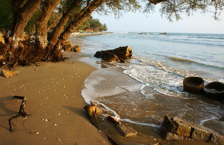 arbol de problemas: La erosi�n en la playa, �rbol con techo, onda destruir malec�n, el efecto del cambio clim�tico, esto es un problema ambiental global en el futuro