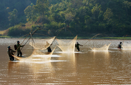 buon: BUON ME THUOT, VIETNAM- FEB 7  People catch fish on ditch, fisherman lifting net from water, lift net is primitive traditional tool, include net, rod, four corner hang up 4 frame, Vietnam, Feb 7, 2014