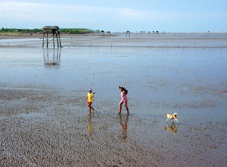 going out: Delta del Mekong, Vietnam-8 luglio Unidentified Asia bambini e cane camminano sulla spiaggia quando la marea di uscire, torre di guardia foglia su mare nero sabbia in pace, paesaggio, Viet Nam, 8 lug 2014