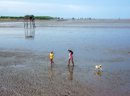 MEKONG DELTA, VIETNAM- JULY 8  Unidentified Asia children and dog walking on beach when tide going out, leaf watch tower on black sand sea in peace, beautiful landscape, Viet Nam, July 8, 2014